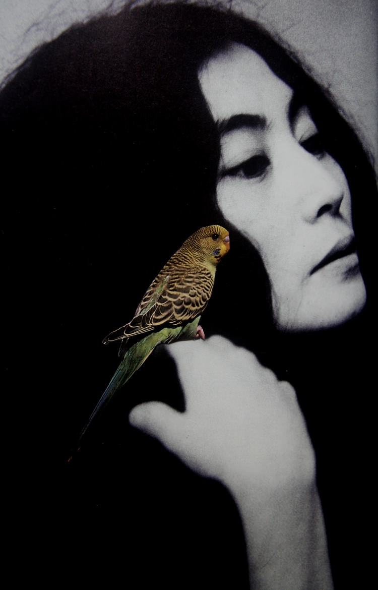 Yoko, archival pigment print on cotton rag paper, 43 x 27.9 cm, 2010
