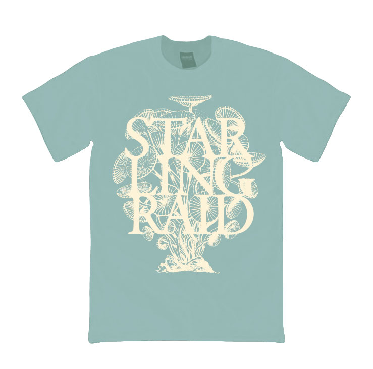 starlingraid_t_01.jpg